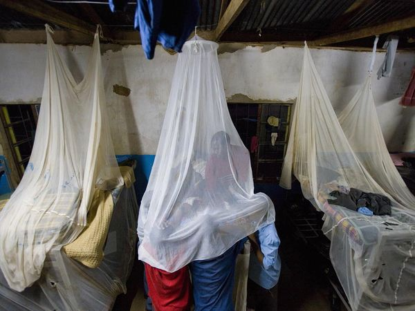 http://science.nationalgeographic.com/science/photos/malaria/#/mosquito-nets_1104_600x450.jpg